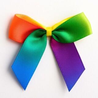 Satijnen Strikjes Rainbow (Zelfklevend) 5 cm - 12 stuks