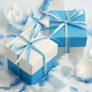 Tweekleurige Doosjes Blauw & Wit Zijdeglans - 10 stuks