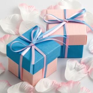 Tweekleurige Doosjes Blauw & Roze Zijdeglans - 10 stuks