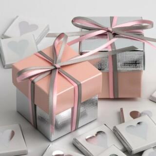 Tweekleurige Doosjes Roze Satijn & Zilver Zijdeglans - 10 stuks