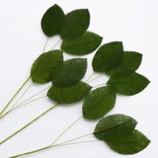 Ruiker Bladeren Groen (36 Bladeren / 12 Stelen per verpakking)